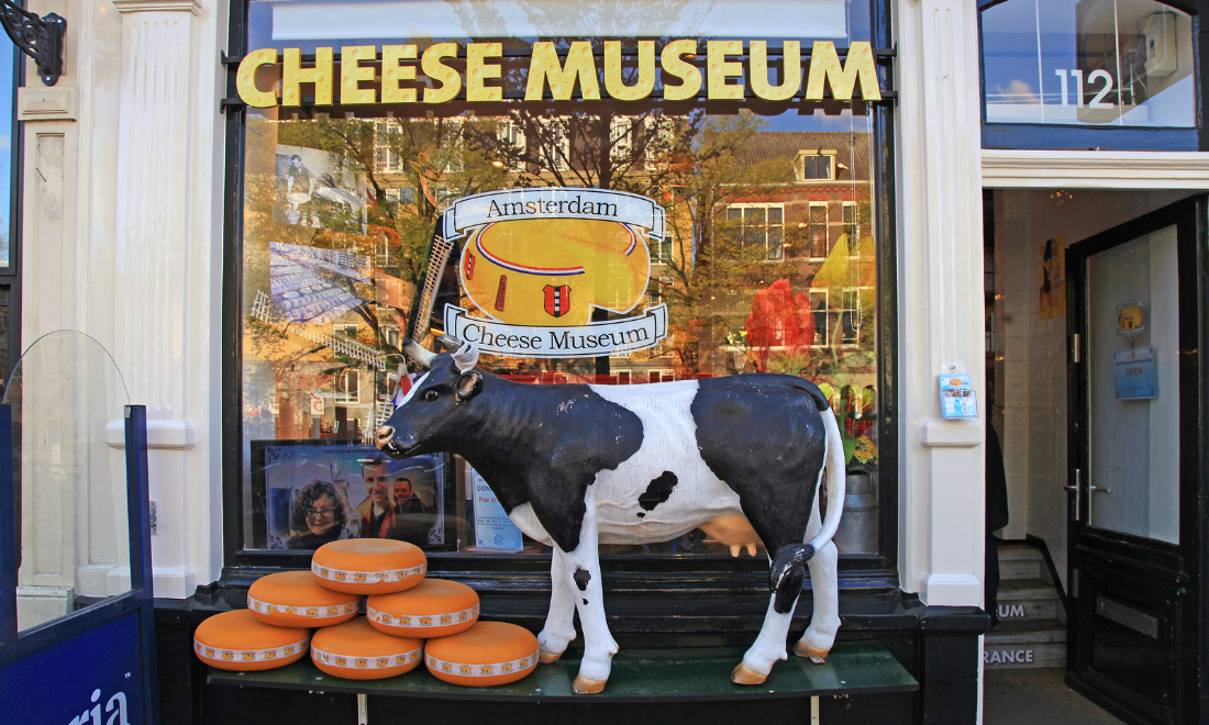 Cow statue and cheese wheels outside Amsterdam cheese museum