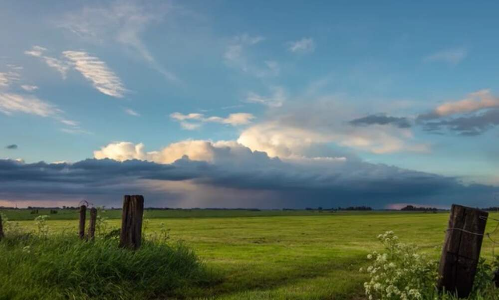 Time-lapse footage shows vibrancy of Dutch nature