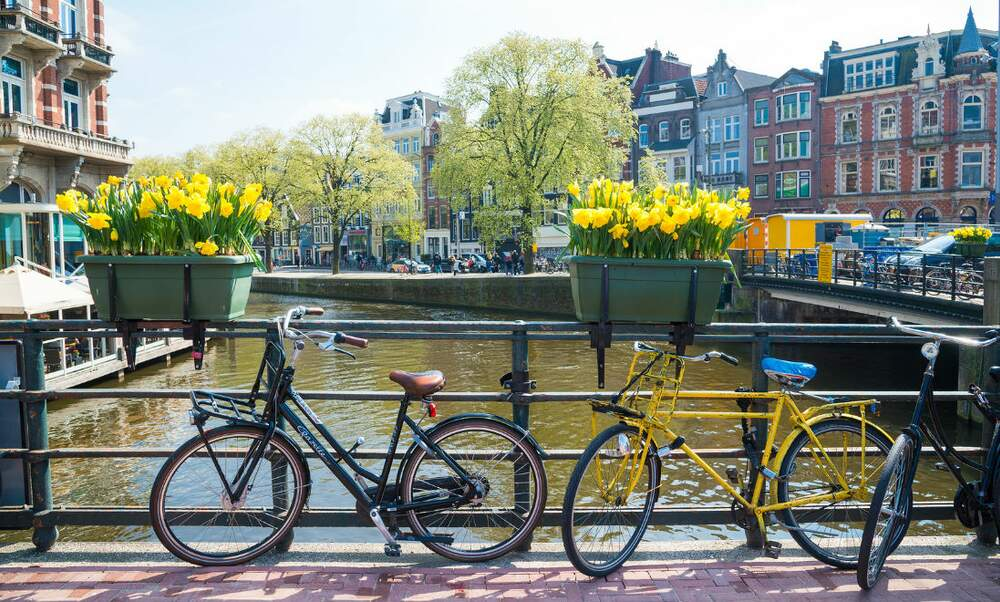 [Video] The BEST things to do in Amsterdam
