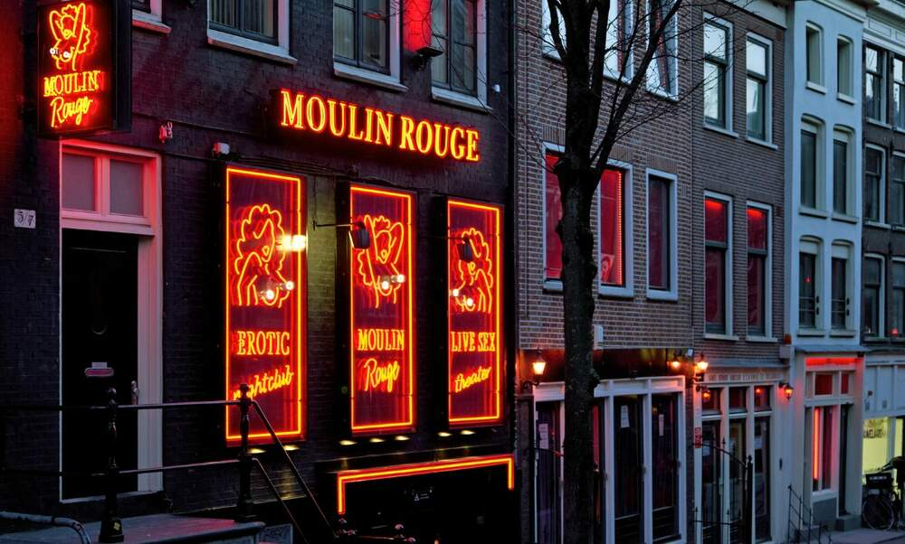 Adult Guide The Hague