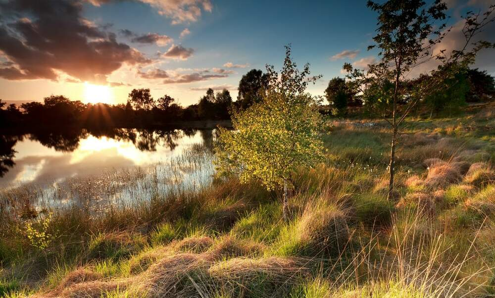 [Video] Exquisite natural areas in North-Brabant