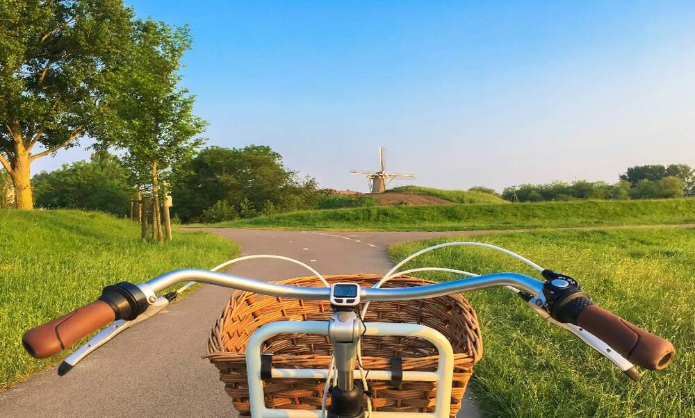Five things the Netherlands does best