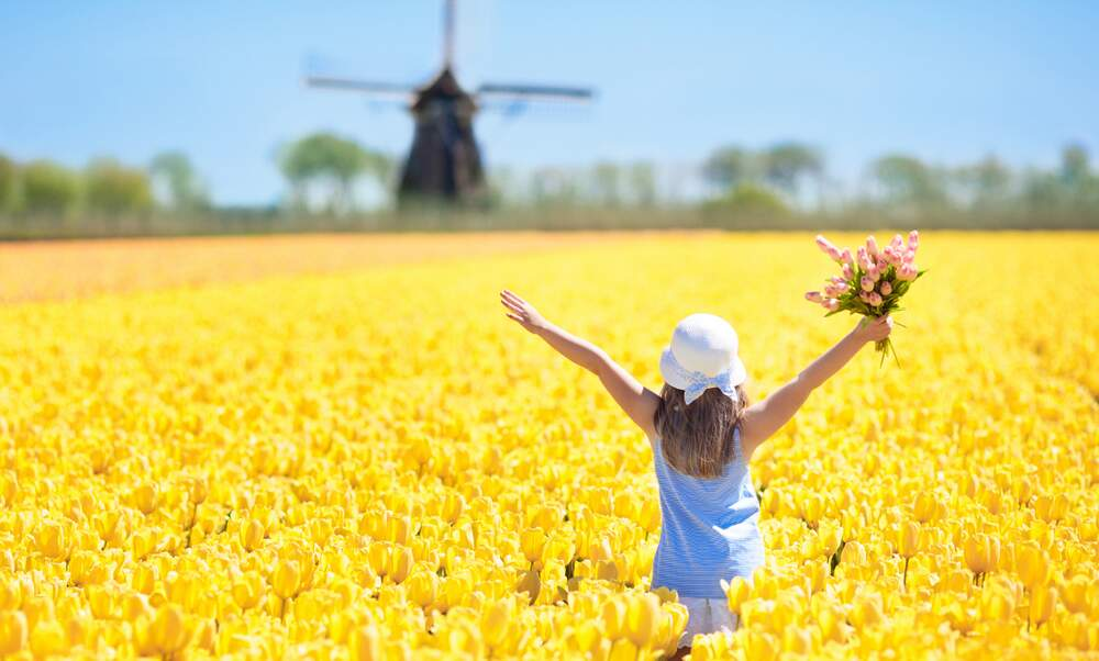 Dutch people are the 5th happiest in the world
