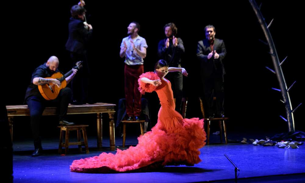 Dutch Flamenco Biennial Online