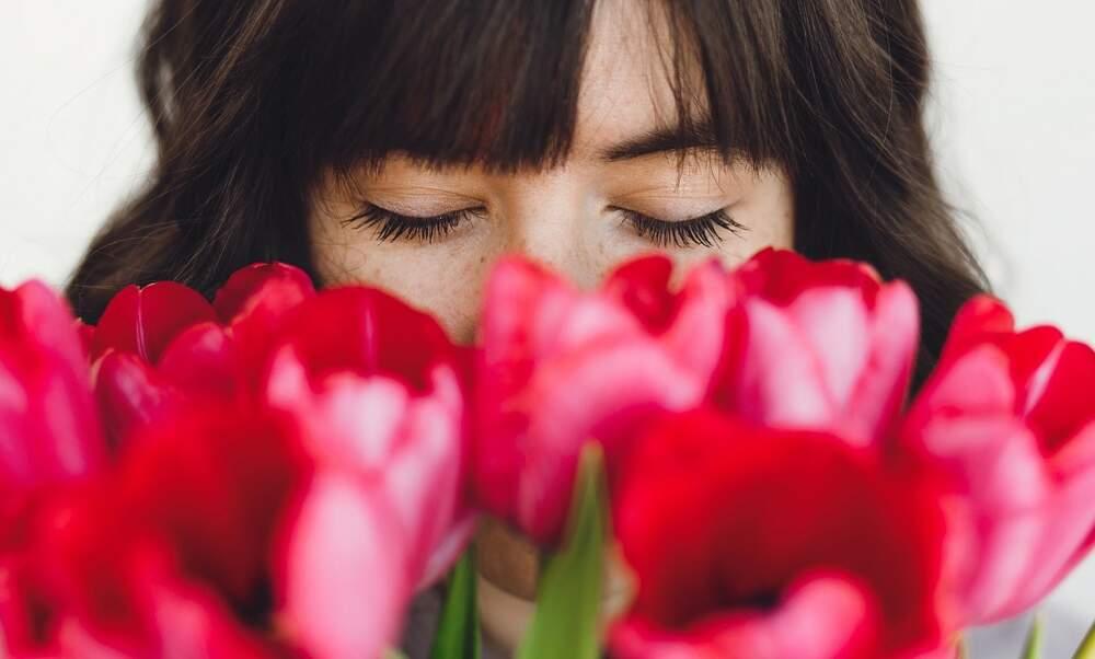 The Dutch language of flowers