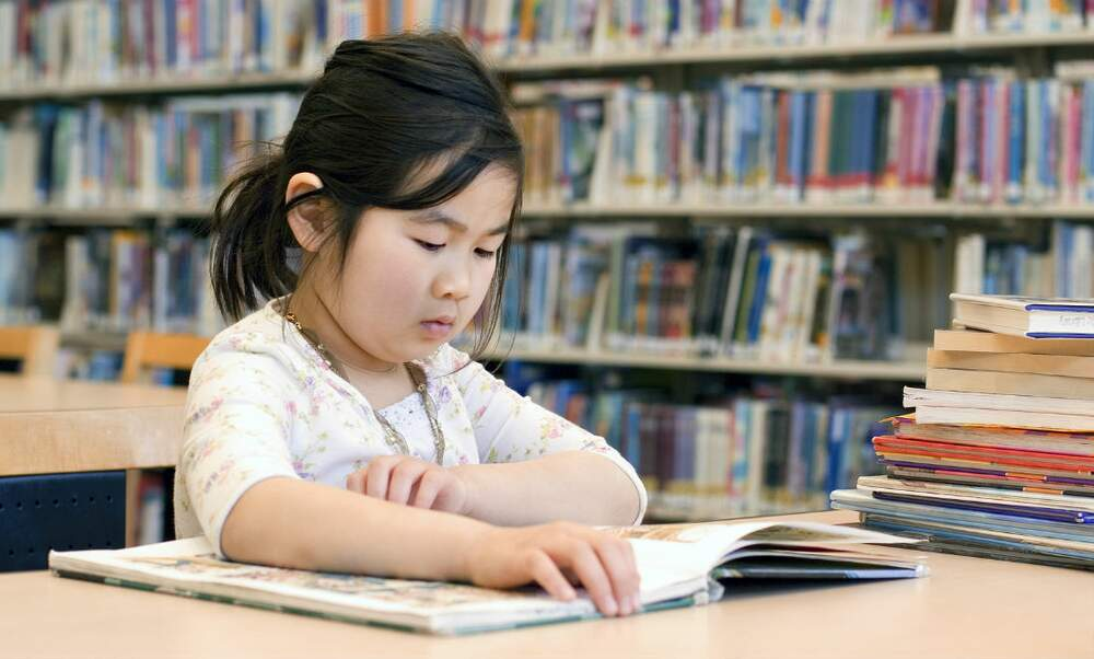 Children leaving schools in the Netherlands functionally illiterate