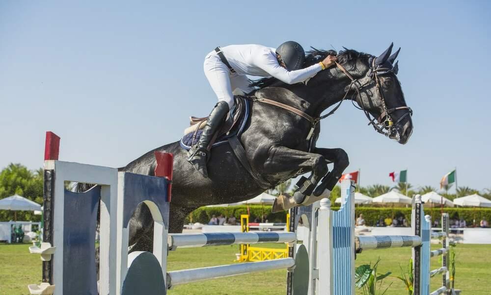 Longines FEI Showjumping European Championships