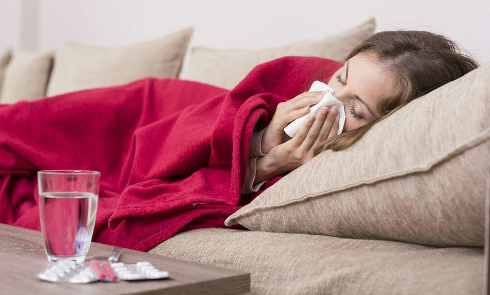 Dutch flu epidemic spreading
