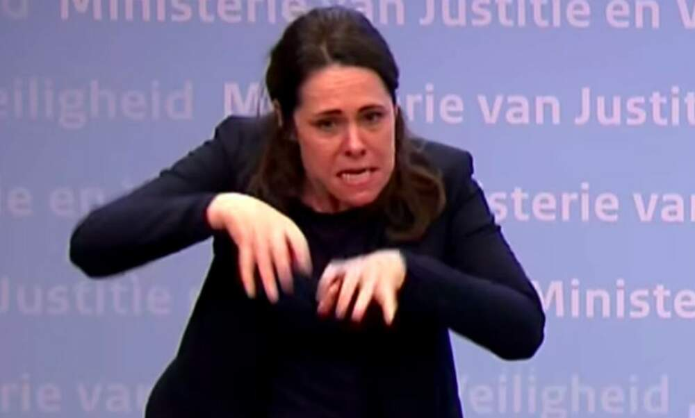 Sign language interpreter goes viral