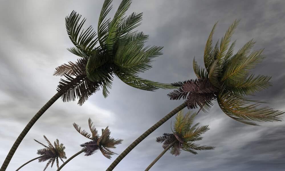Dutch islands ravaged by Hurricane Irma
