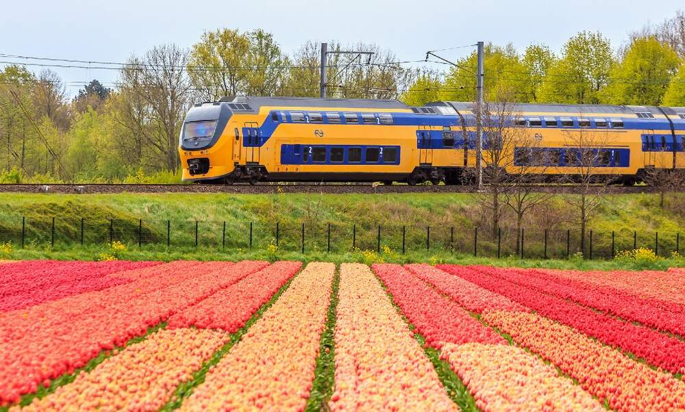 Restrictions lifted on train travel in Europe