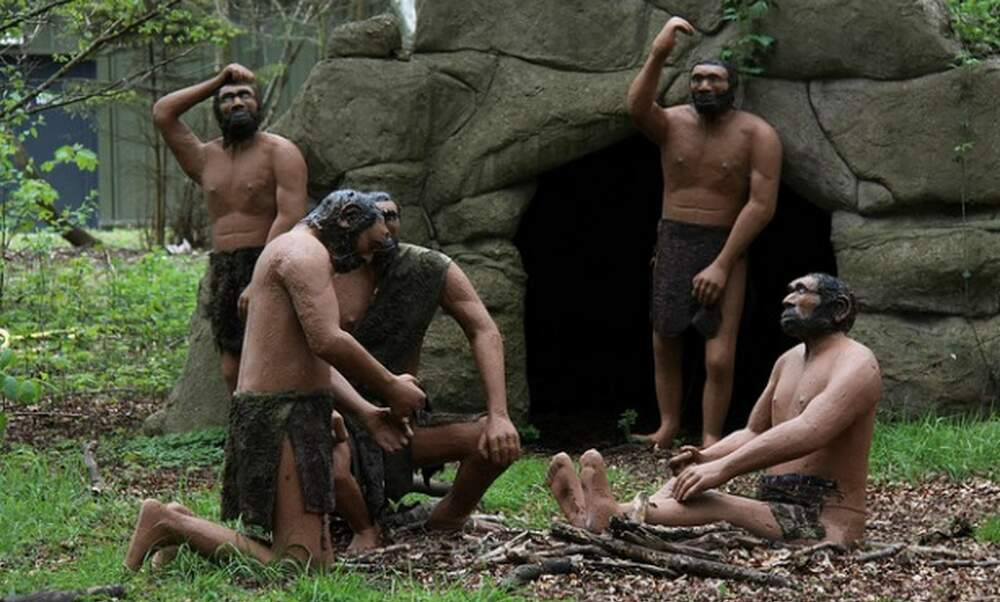 Remains of Neanderthal camp a major new Dutch find