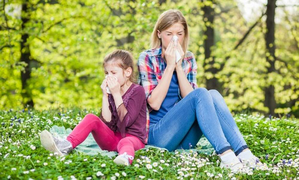 Allergies in the Netherlands: when and what?
