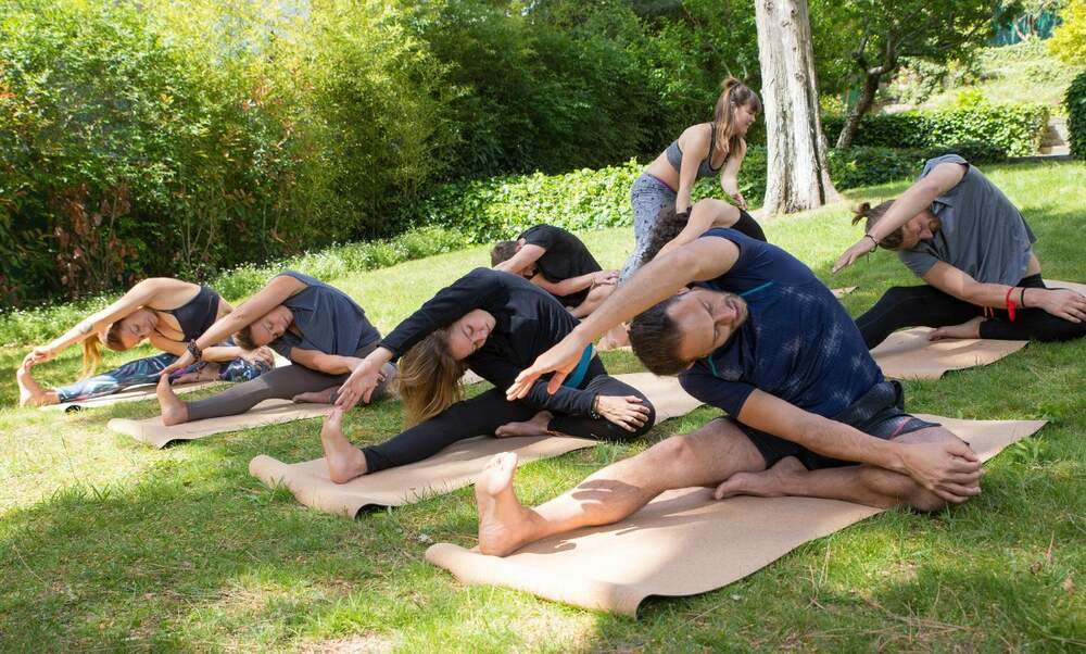 Outdoor summer yoga classes in the Netherlands