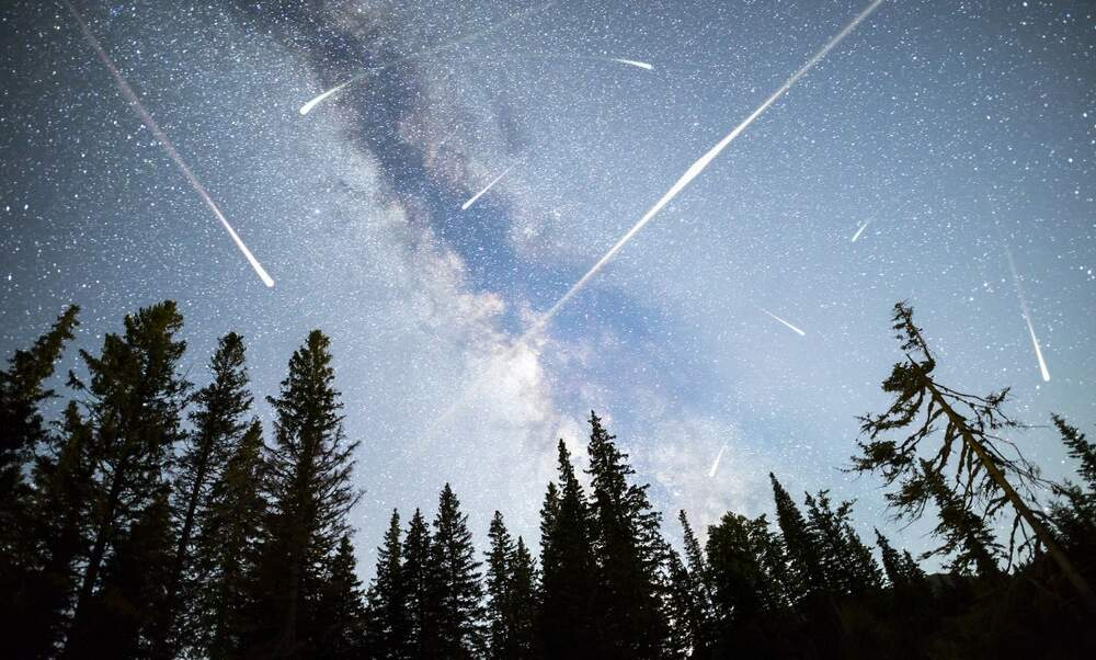 See the Perseid meteor shower in the Netherlands