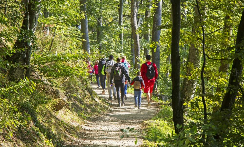 10 tips for preparing for a safe day's hike