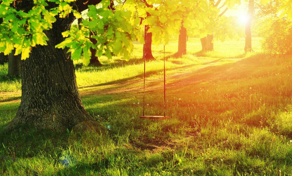 The swing under the old oak tree (and the priceless memories that accompany it)