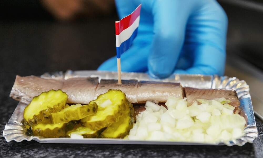 The Netherlands will donate first catch of herring to German and Dutch healthcare workers