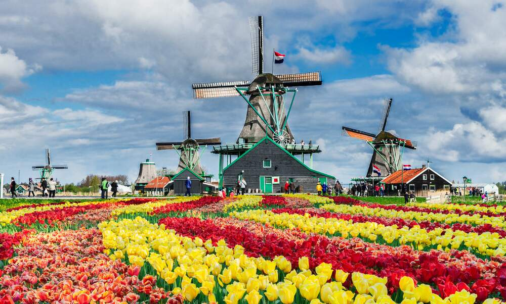 What do the Dutch think is typically Dutch?