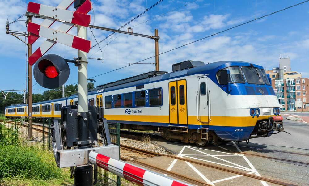 Almost 5.000 trains in the Netherlands delayed due to animal incidents