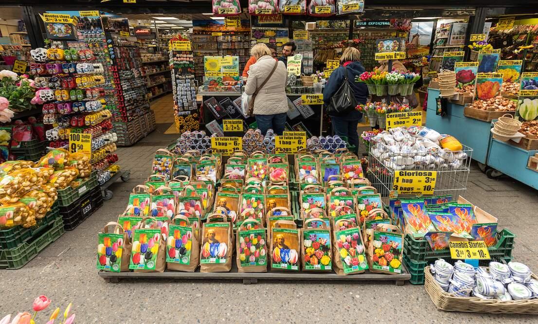 Tulip trickery: Tourists duped
