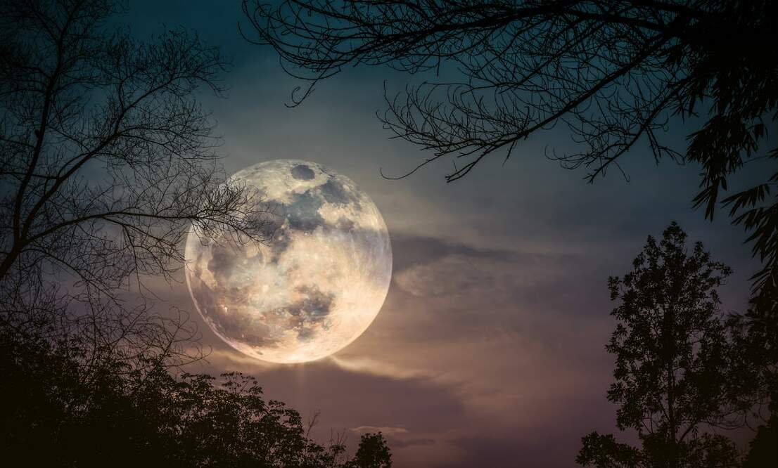 The biggest and brightest moon of 2019: Super Snow Moon in the Netherlands