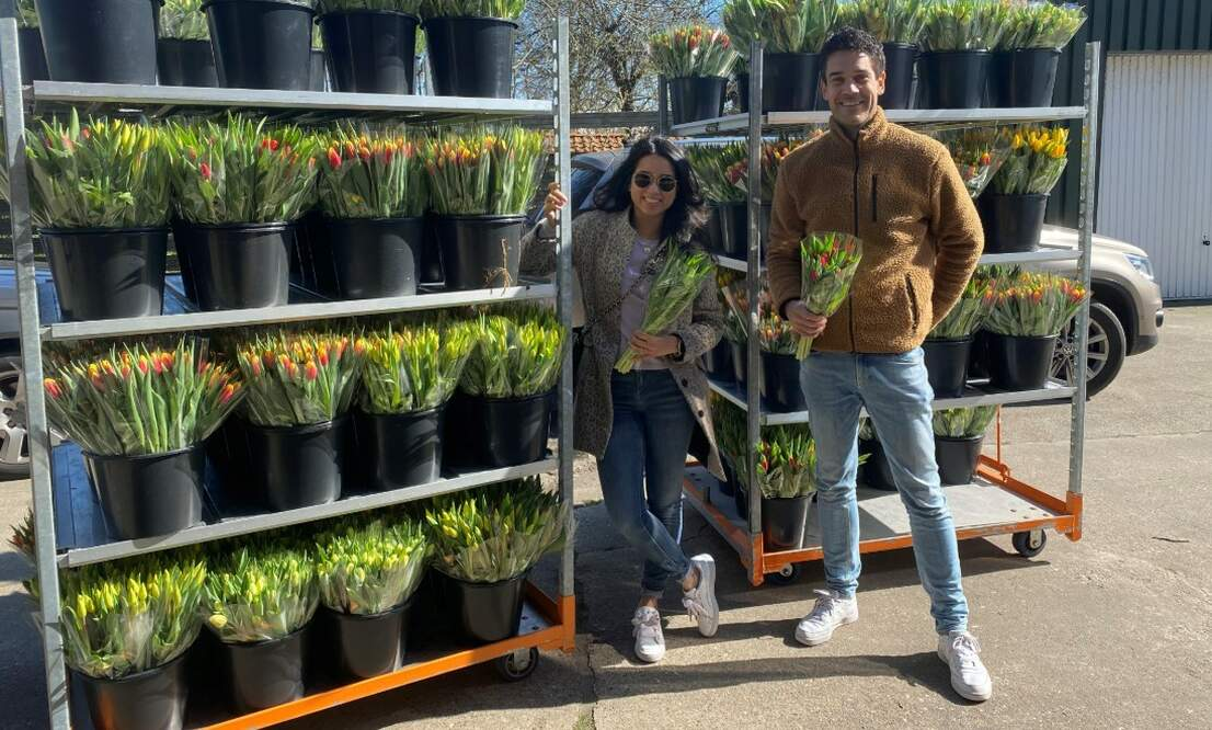 Thulpactie: Brightening up nursing homes with tulips