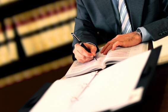 Lawyers & Legal services in the Netherlands