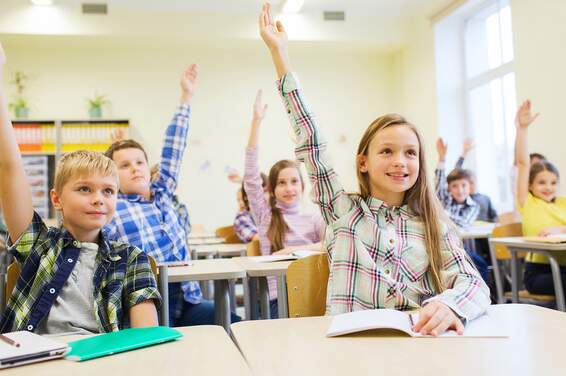 Dutch school types