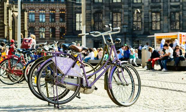 Dutch words and expressions every cyclist needs to know