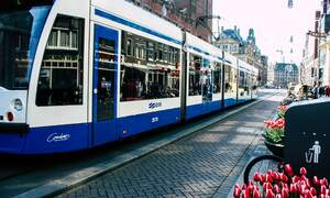 Regional Dutch transport providers to join major nationwide strike