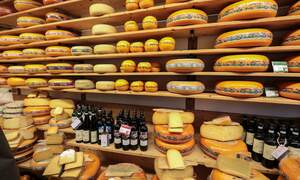 7 tasty spots for cheese lovers in the Netherlands