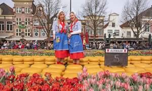 Cheese Market Alkmaar
