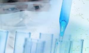 Coronavirus update (June 11): 48.251 confirmed cases