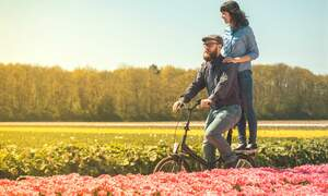 5 ways to celebrate spring in the Netherlands