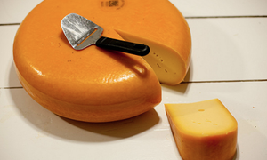 The Netherlands produces the world's best cheese