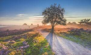 [Video] Time-lapses of the Netherlands