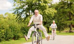 Dutch pension system second best in the world