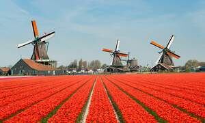 Spring weather is finally on its way to the Netherlands