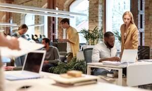 21st century Dutch work culture