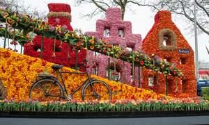 Flower Parade of the Bulb Region