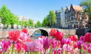The Netherlands scores a spot on the Lonely Planet top 10 2020 destinations