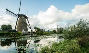 Nature hotspots in South Holland