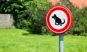 Top neighbourhood nuisances in the Netherlands