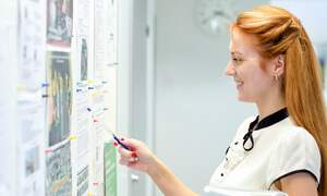 2015 Keuzegids: Dutch university disciplines with best job prospects