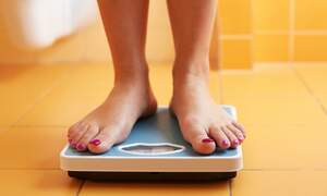 Dutch researchers suggest obesity might not affect life expectancy