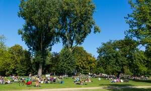 Amsterdam green spaces receive 10 million euro investment