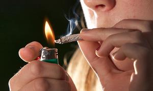 Utrecht seeks to regulate cannabis production