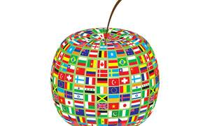 ABC of expat woman's life: D - Dimensions of culture