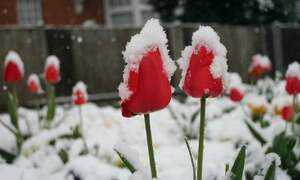 March could be the coldest in 25 years
